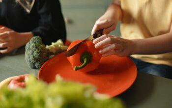okul öncesi dönemde çocukların beslenme alışkanlıkları ve ailelerin yapabilecekleri